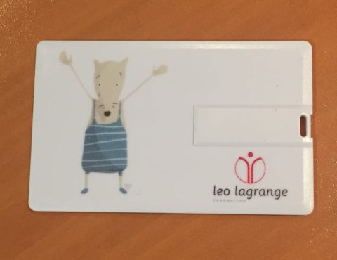Carte de visite USB Association Léo Lagrange
