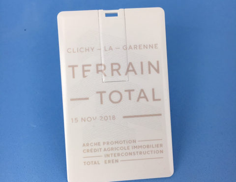 Carte de visite USB Terrain Total
