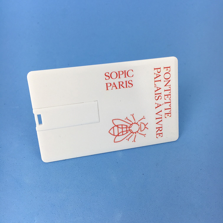 Carte de visite USB Sopic Paris